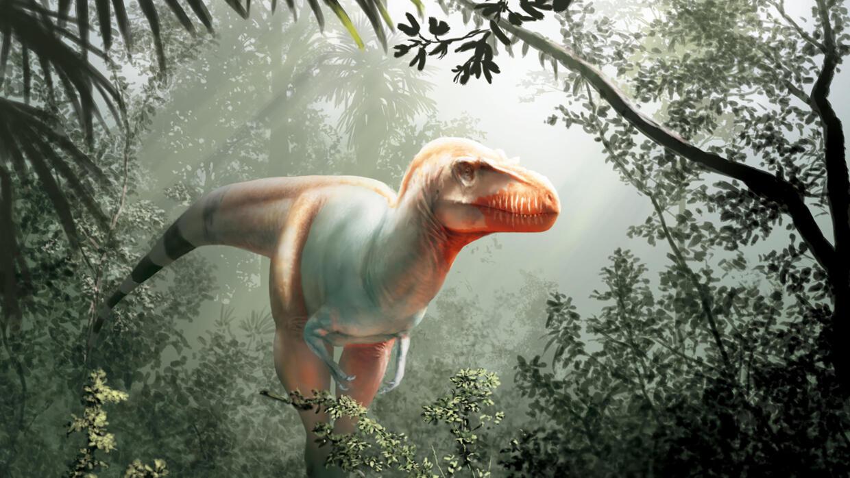 Meet T-Rex's older cousin: The Reaper of Death - FRANCE 24