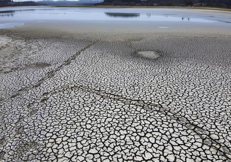 """Las grandes sequías asociadas al fenómeno del Niño ahora son """"más graves"""" y han vuelto los bosques """"mucho más inflamables"""", dijo el vicepresidente delBanco Mundialpara América Latina y el Caribe."""