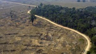 Esta foto de agosto de 2019 muestra áreas quemadas de la Amazonía, cerca de Porto Velho, Rondonia, en Brasil