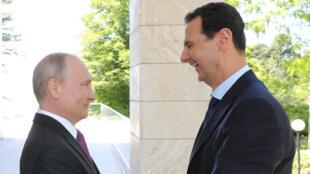 الرئيسان الروسي فلاديمير بوتين والسوري بشار الأسد خلال لقاء جمعهما في سوتشي في روسيا في 17 أيار/مايو 2018