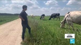 French farmer Damien Hahusseau has seen more clients visiting his farm during the country's Covid-19 lockdown.