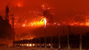"""Les flammes du """"Glass Fire"""" à St. Helena, en Californie, le 27 septembre 2020."""