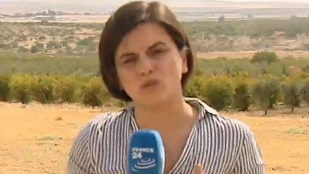 L'envoyée spéciale de France 24, Fatma Kizilboga, postée à la frontière turco-syrienne, mercredi 24 août 2016.