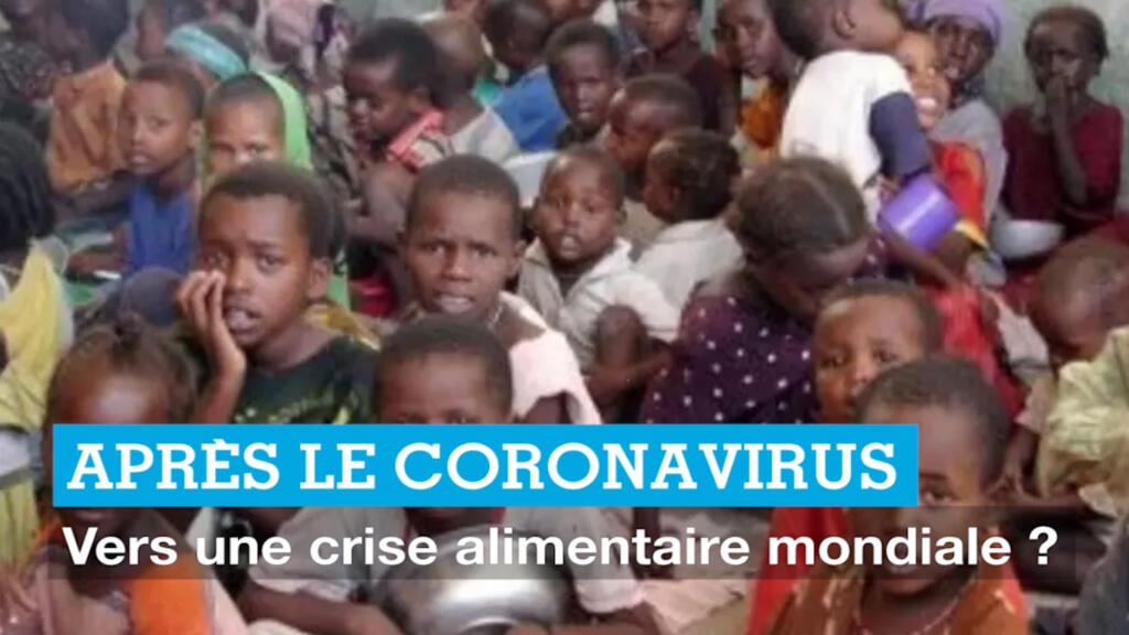 Après le coronavirus : vers une crise alimentaire mondiale ?
