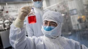 باحث في مختبر في مختبر سينوفاك في بكين في 29 نيسان/ابريل لايجاد لقاح لفيروس كورونا المستجد