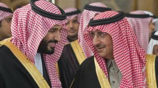 صورة نشرها الديوان الملكي السعودي في 14 كانون الأول/ديسمبر 2016 تظهر الأمير محمد بن نايف (يمين) وولي العهد السعودي الأمير محمد بن سلمان