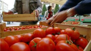 Les producteurs de tomates, poivrons, pommes, poires... sont concernés par les mesures de soutien de l'UE
