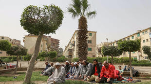 """Egyptian men perform the """"Zuhr (noon) prayer"""" at a public park in the capital Cairo, with mosques  remaining closed to curb the spread of coronavirus"""