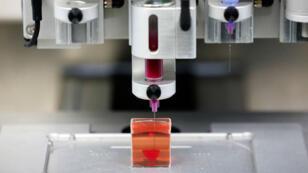 Impresión 3D del primer corazón vivo utilizando tejidos humanos. Una invención de científicos israelíes de la Universidad de Tel Aviv 15 de abril de 2019.