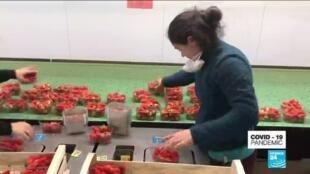 2020-03-31 08:10 Coronavirus pandemic: supermarkets turn to French farmers to supply food