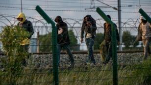 Des migrants ont escaladé une barrière pour accéder à l'entrée de l'Eurotunnel près de Calais, le 28 juillet 2015.