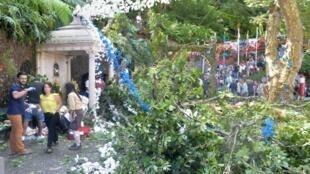 المنطقة المنكوبة إثر سقوط شجرة في مدينة فونشال في جزيرة ماديرا البرتغالية في 15 آب/أغسطس 2017