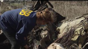 Des enquêteurs de l'Autorité de sûreté des transports (NTSB) examinent les débris de l'hélicoptère transportant Kobe Bryant qui s'est écrasé le 26 janvier 2020 près de Los Angeles