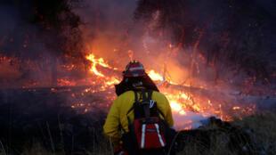 Un bombero intenta apagar las llamas de un incendio forestal en las cercanías de Santa Rosa, California.