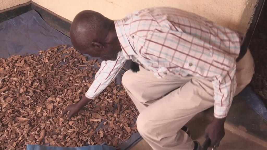 Rwandan genocide: 25 years on, mass graves still being