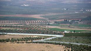 L'armée turque vise principalement les positions kurdes dans le secteur d'Afrin.