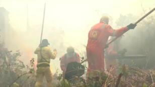 Une brigade spéciale intervient dans la ville de Porto Velho, la capitale de l'État de Rondônia au Brésil, pour lutter contre des départs de feu.