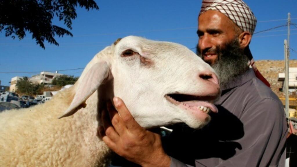 Eid reprieve: Palestinian economic woes save sacrificial lambs