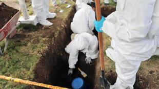 Publicación de la imagen por parte de la oficina de prensa de la Jurisdicción Especial para la Paz (JEP) de expertos que excavan en un cementerio en Las Mercedes, al sur de Colombia el 14 de diciembre de 2019