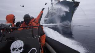 Des activistes de Sea Shepherd face à un baleinier japonais, qui les tient à distance grâce à des canons à eau.