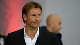 Hervé Renard avait été recruté par le Losc l'été dernier.