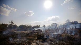 Photo des dévastations causées par un incendie dans la forêt amazonienne