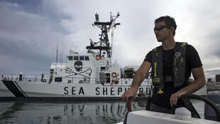 Sea Shepherd conservationists have been repeatedly attacked while patrolling the vaquita marina refuge that Mexico has established in the Gulf of California