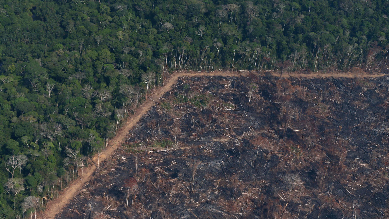 vista aérea de un tramo quemado de la selva amazónica cerca de Porto Velho, Brasil, el 29 de agosto de 2019.