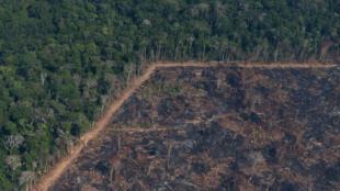 Archivo: Vista aérea de un tramo quemado de la selva amazónica cerca de Porto Velho, Brasil, el 29 de agosto de 2019.