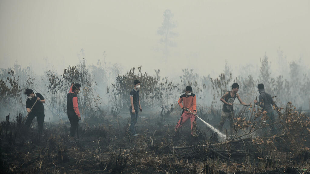 Des volontaires éteignent des feux en Indonésie, le 27 octobre 2015.