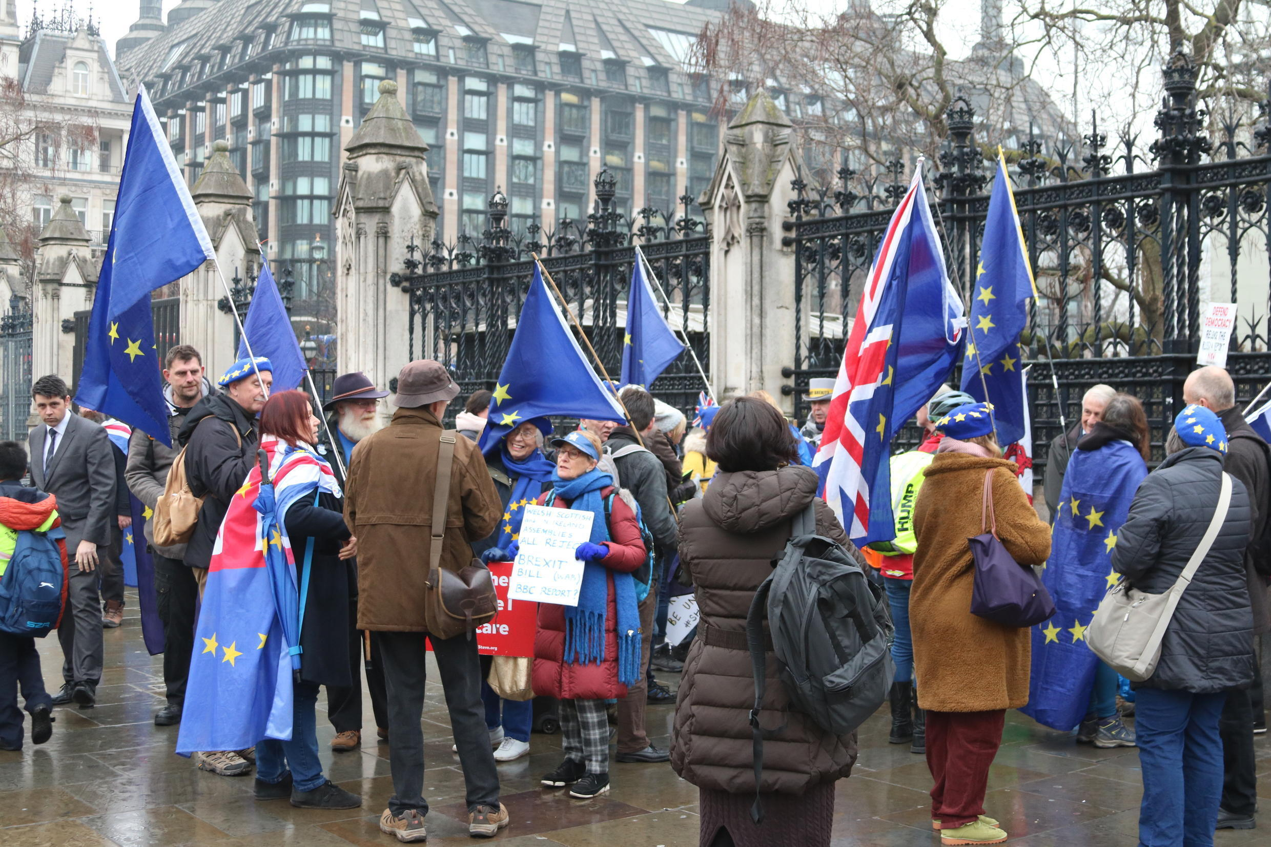 Anti-Brexit protesters at Westminster