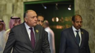 وزير الخارجية المصري سامح شكري