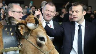 الرئيس الفرنسي إيمانويل ماكرون في معرض الزراعة الدولي في باريس 24 شباط/فبراير 2018.