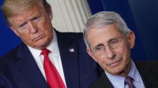 Donald Trump et son conseiller sur le coronavirus, Anthony Fauci, sont en désaccord sur la réouverture des écoles.