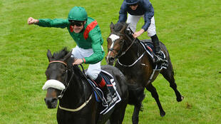 Irish President Michael D Higgins led the tributes to 2016 Epsom Derby winning jockey Pat Smullen who has died of pancreatic cancer aged 43