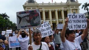 Manifestantes en Hanoi contra la compañía taiwanesa Formosa en una protesta del 1 de mayo de 2016.
