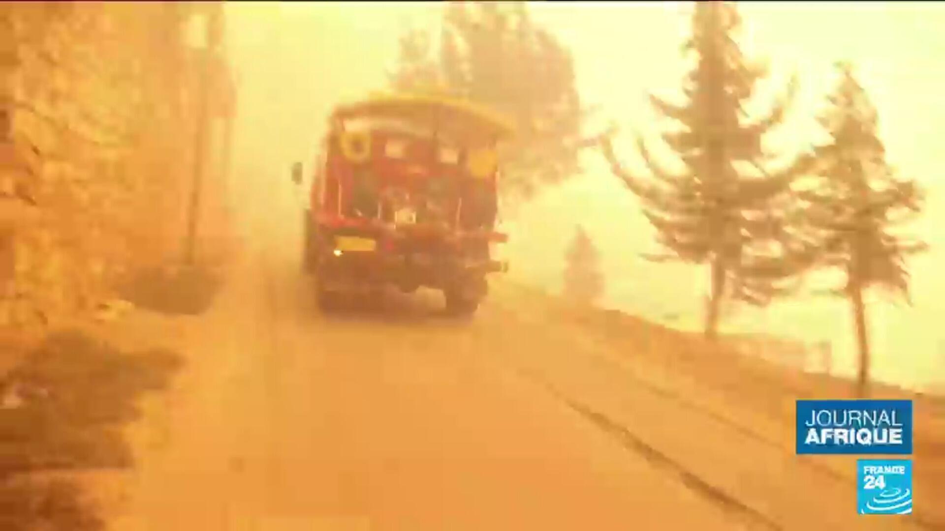 Au moins 69 morts dans des incendies en Algérie, la solidarité s'organise