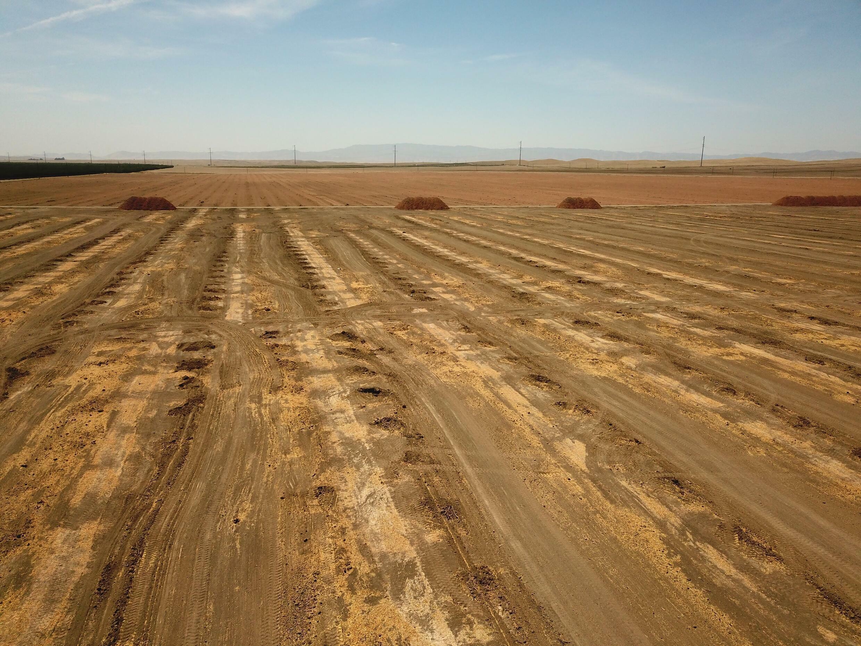 Un campo seco en el que antes había almendros en Huron, en California, el 23 de julio de 2021