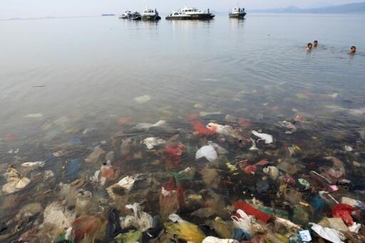 Actualmente, el mundo produce más de 300 millones de toneladas de plásticos al año, y hay al menos cinco billones de piezas de plástico flotando en nuestros océanos, según los científicos.