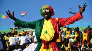 مشجع سنغالي خلال مباراة ضد منتخب بنين. القاهرة 10 يوليو/تموز 2019.