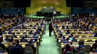 Imagen de la sesión en el Consejo de Derechos Humanos de la ONU, en la que Venezuela obtuvo un escaño para formar parte de este organismo, el 17 de octubre de 2019, en Ginebra, Suiza.