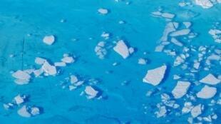 قطع من الجليد تطفو على سطح الماء