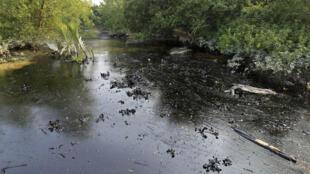 La marée noire s'est déversée en moins d'une semaine, sur 350 kilomètres carrés.