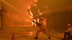 Des pompiers tentant d'éteindre un feu lors de l'incendie de Woolsey à Malibu, Californie, États-Unis, le 9 novembre 2018.