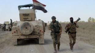 القوات العراقية في الفلوجة