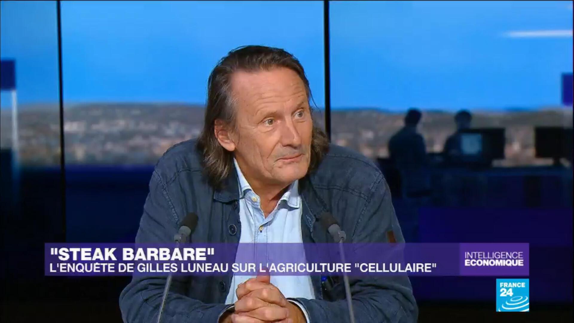 Gilles Luneau, journaliste