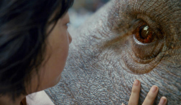 """Bong Joon-ho's """"Okja"""" is one of two competition entries produced by digital upstart Netflix. Copyright: Netflix, Kimberly French"""