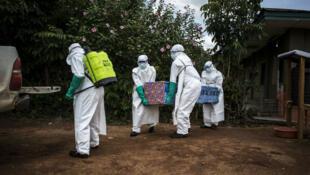 Des agents de santé déplacent un corps le 22 août 2018, à Mangina, près de Beni, dans la province du Nord-Kivu, en République démocratique du Congo.