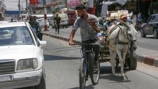 موظف أثناء توصيله القهوة من كشك شعبان حمودة في غزة بتاريخ 13 تموز/يوليو