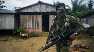 Un membre de l'Armée de libération nationale (ELN) en Colombie, en novembre2017.